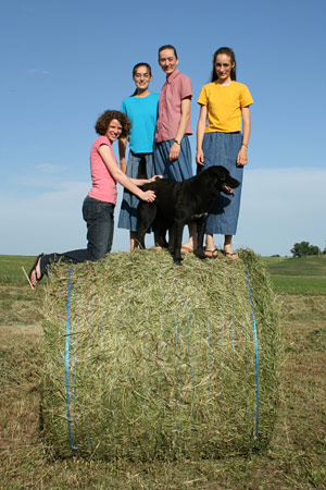 Bales are great fun to climb on!